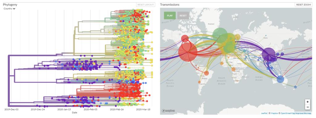 Gráficos de la evolución del Covid-19 a nivel genómico